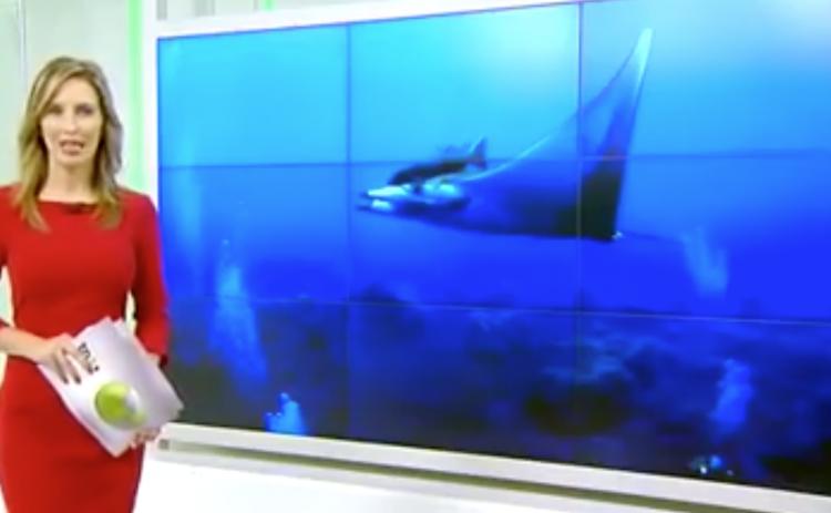 Buceo la Restinga - El Hierro - En los medios (TVCanaria)